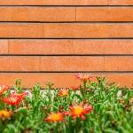 Dirgodaz Brick by omid360.comعکاسی تبلیغاتی آجر دیرگداز 2 150x150 - نمونه عکسهای صنعتی تبلیغاتی